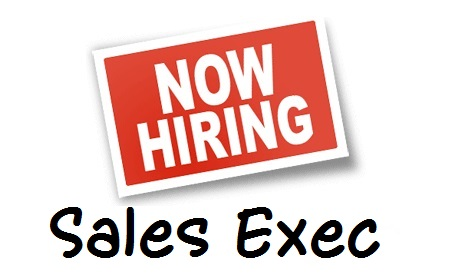Hot Job: Staffing Account Executive - AavalarAavalar